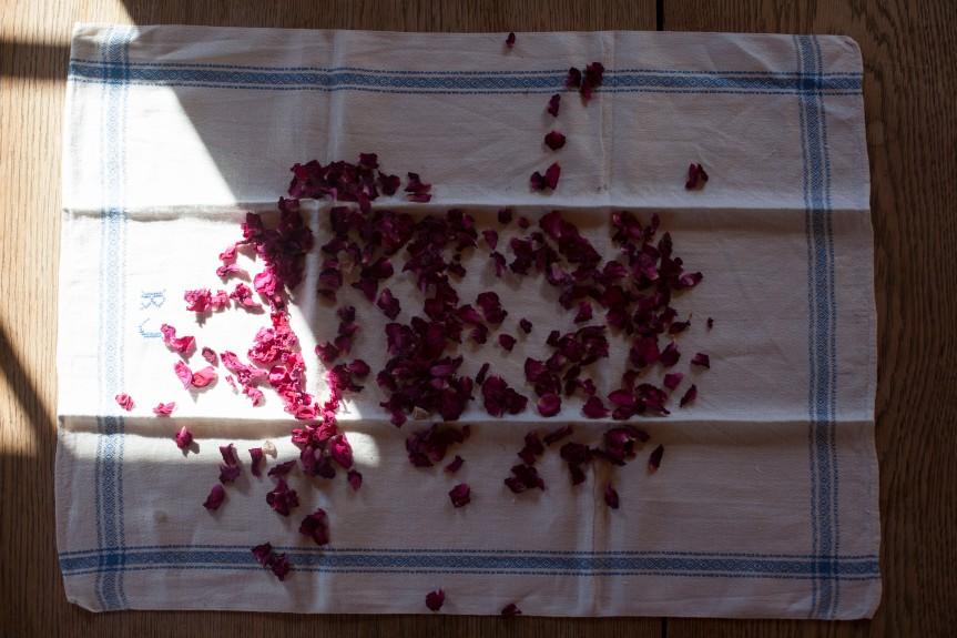 Roseblader_1 (1)